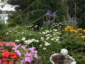 garden-design7