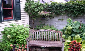 Flowers for Minnesota Gardening